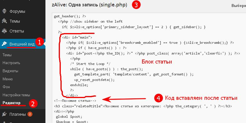 Вставка кода в single.php