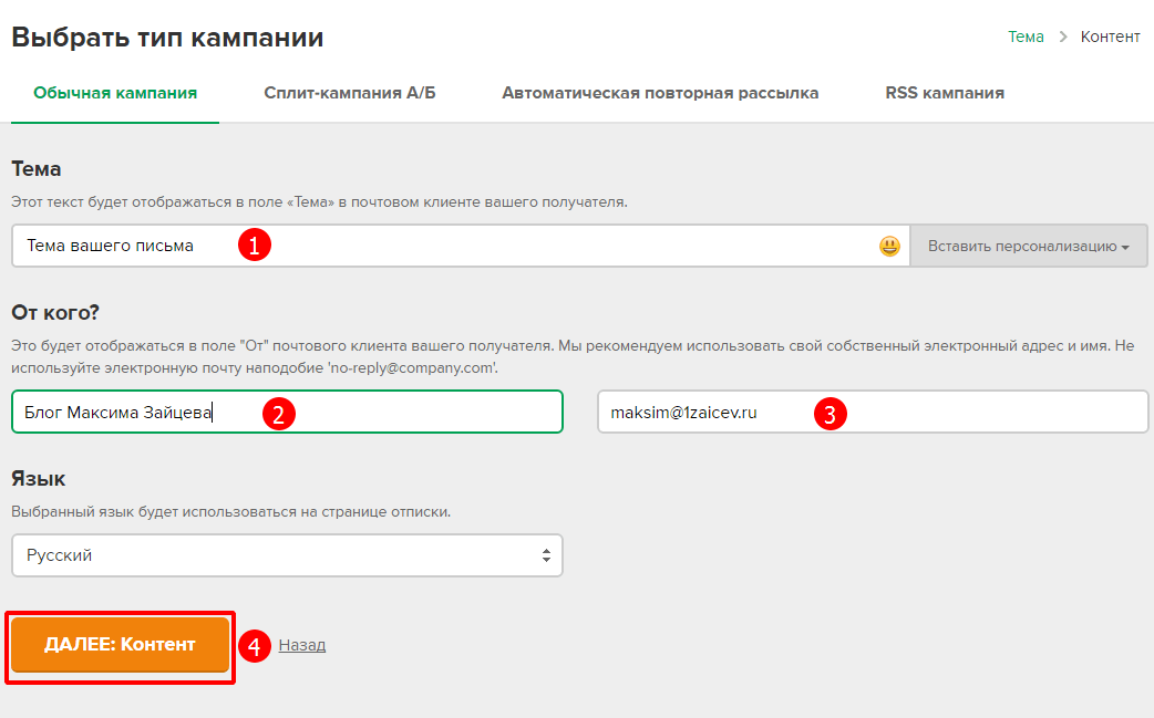 Настройка рассылки в сервисе MailerLite, тип компании